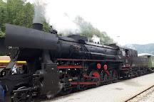 Oldtimer train (Treno storico Transalpina), Bled, Slovenia