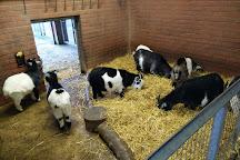 Banham Zoo, Banham, United Kingdom