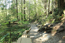 Lynn Canyon Park, North Vancouver, Canada