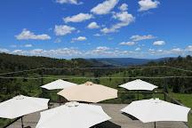 Mountview Alpaca Farm, Canungra, Australia
