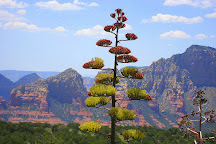 Schnebly Hill Vista Overlook, Sedona, United States