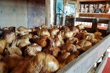 The Garlic Farm, Newchurch, United Kingdom