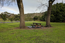 Valley Lake Conservation Park, Mount Gambier, Australia