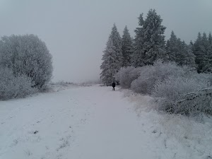 Ski Botrange