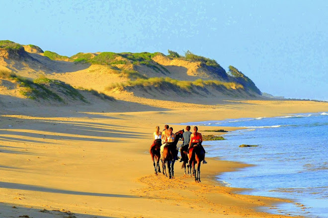 Cavalheiros Do Tofo, Tofo, Mozambique