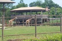Tulsa Zoo, Tulsa, United States