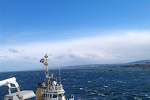 Tandem Limitada, Punta Arenas, Chile