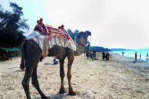 Ganpati Phule Beach, Maharashtra, India