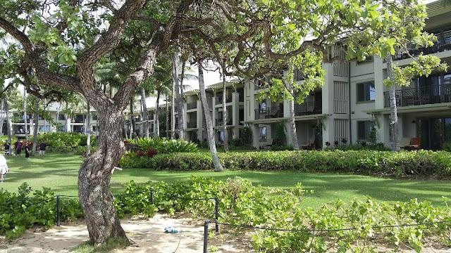 kawela bay beach park hawaii