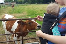 Langleybury Children's Farm, Kings Langley, United Kingdom
