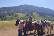 Willow Creek Horseback Rides, Jackson, United States