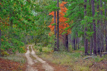 Poinsett State Park, Wedgefield, United States