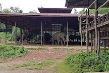 Saiyok Elephant Park, Sai Yok, Thailand