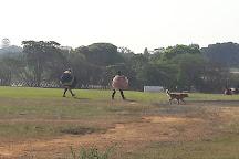 Skydive Boituva, Boituva, Brazil