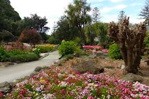 Centennial Garden, Napier, New Zealand