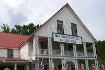 Nacoochee Village Antique Mall, Helen, United States