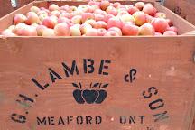 Grandma Lambe's, Meaford, Canada