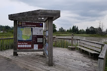 Seney National Wildlife Refuge, Seney, United States