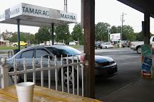 Tamarac Marina, Salisbury, United States