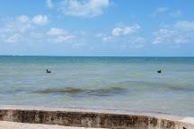 Higgs Beach Dog Park, Key West, United States