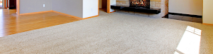 TW PRO Carpet & Upholstery Cleaning Services