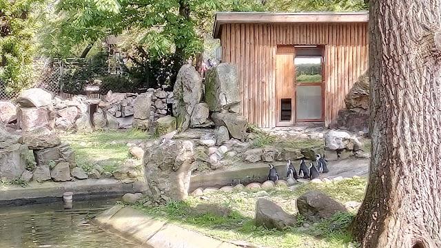 Parc zoologique de Varsovie