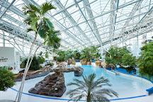 Center Parcs - Whinfell Forest, Penrith, United Kingdom