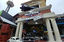 Hollywood Star Cars Museum, Gatlinburg, United States