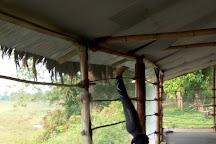 Evergreen Yoga Studio Chitwan, Sauraha, Nepal
