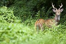Ever Wild Trek & Tours, Chitwan National Park, Nepal