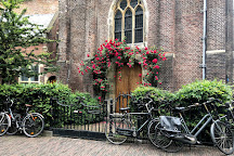 Sint-Bavokerk (Church of St. Bavo), Haarlem, The Netherlands