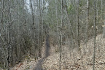 Harold Town Conservation Area, Peterborough, Canada