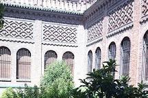 Instituto Valencia de Don Juan, Madrid, Spain