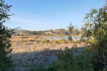 Sanctuary Laguna el Peral, Isla Negra, Chile