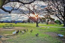 Anderson Park, Napier, New Zealand
