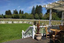 Geyser Peak Winery, Healdsburg, United States