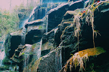Yellow Branch Falls, Mountain Rest, United States