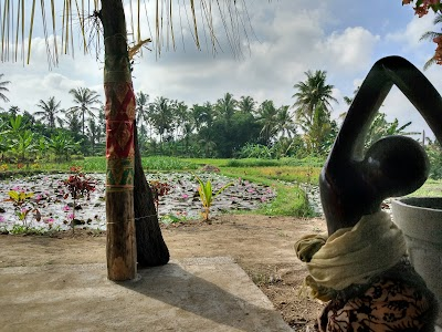 Taman Baca Masyarakat Jyothisara