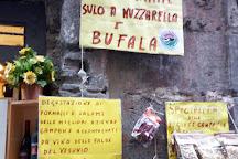Salumeria Rafele o' Lattaro, Naples, Italy