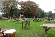 The Llama Park, Forest Row, United Kingdom