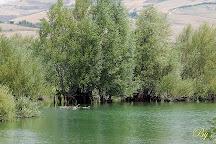 Oasi WWF Lago di Conza, Conza della Campania, Italy