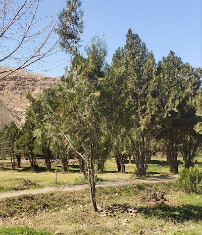 Monciplaty Park د ښاروالۍ پارک
