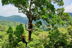 Flight of the Gibbon - Chonburi