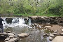 Waterfall Glen Forest Preserve, Darien, United States