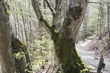 Cascade de Vaucoux, Besse-et-Saint-Anastaise, France