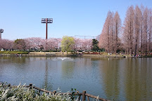 Kitamoto General Park, Kitamoto, Japan
