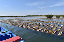 Lagune de la Somone, Somone, Senegal