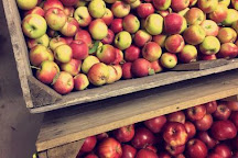 Mueller's Orchard and Cider Mill, Linden, United States