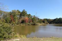 Faulkner Park, Tyler, United States