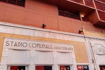 Luigi Ferraris Stadium, Genoa, Italy